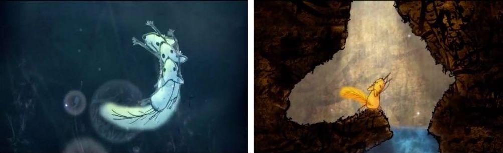 Photogrammes du film Le renard et la musique