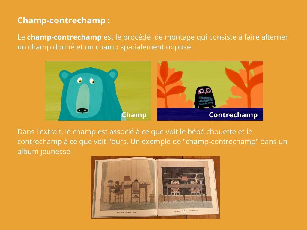 Le champ-contrechamp est le procédé de montage qui consiste à faire alterner un champ donné et un champ spatialement opposé. Dans l'extrait, le champ est associé à ce que voit le bébé chouette et le contrechamp à ce que voit l'ours.